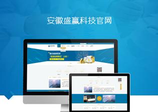 安徽盛赢科技官网