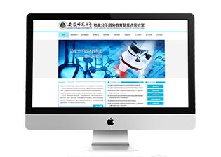教育部重点实验室网站